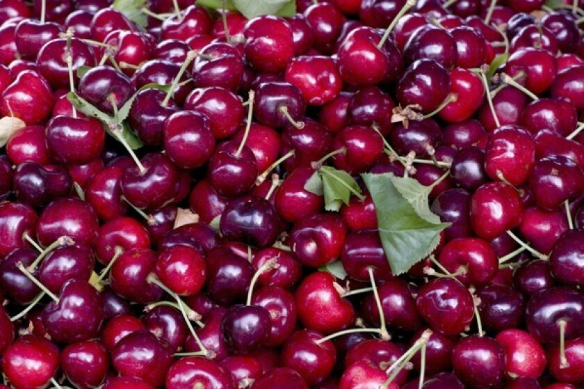 Bing cherries grown by Mark Lewis in the Stockton Delta, and sold by Zuckerman's Farm at the Hollywood farmers market.