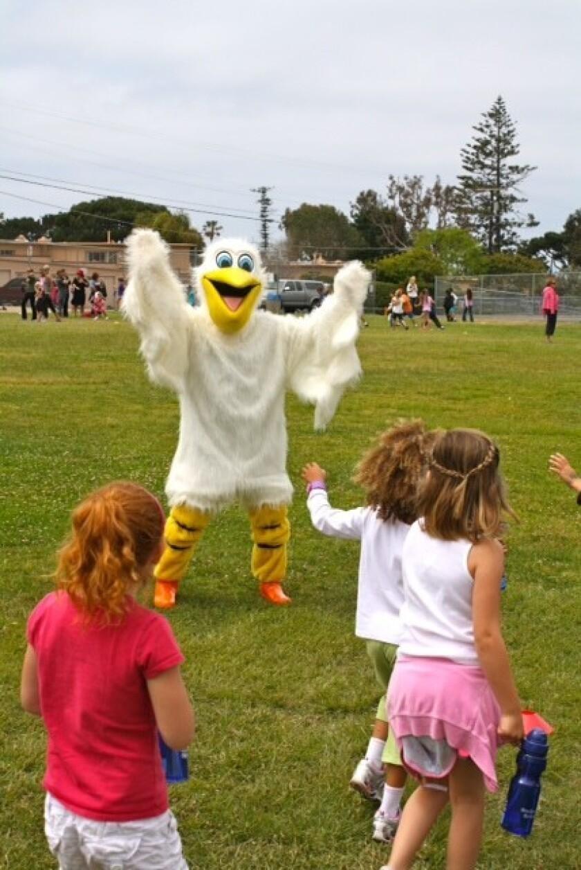Rocky the Pelican from Bird Rock Elementary