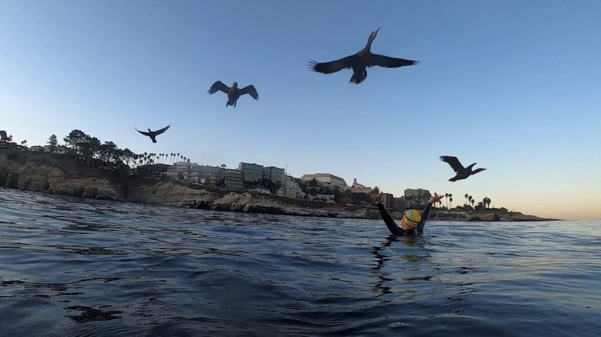 Adriana Issakov greets the cormorants taking flight over her at La Jolla Cove.