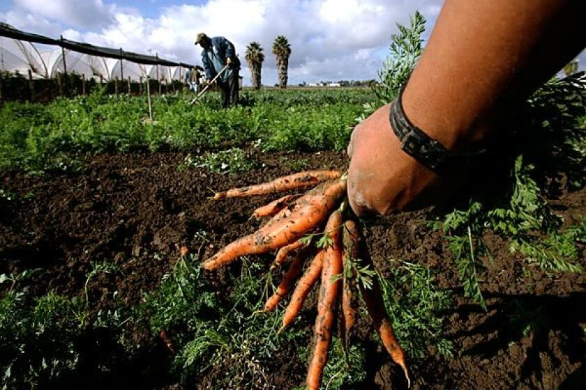 """The issues facing agriculture today are much more complicated than lining up behind labels such as """"local"""" and """"organic."""""""