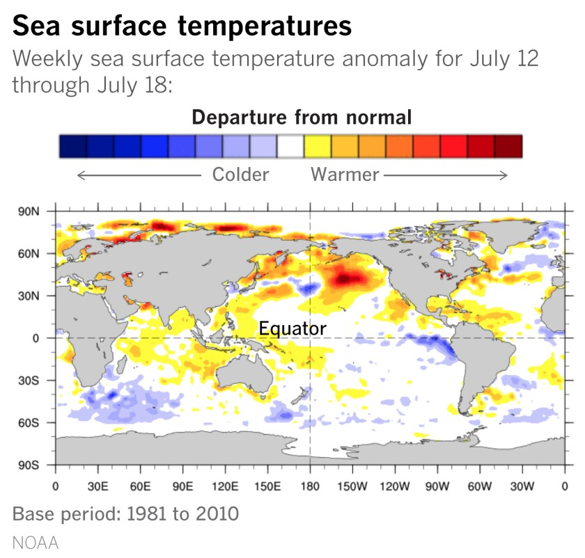 Cooler-than-average sea surface temperatures have been detected in the equatorial Pacific off South America.
