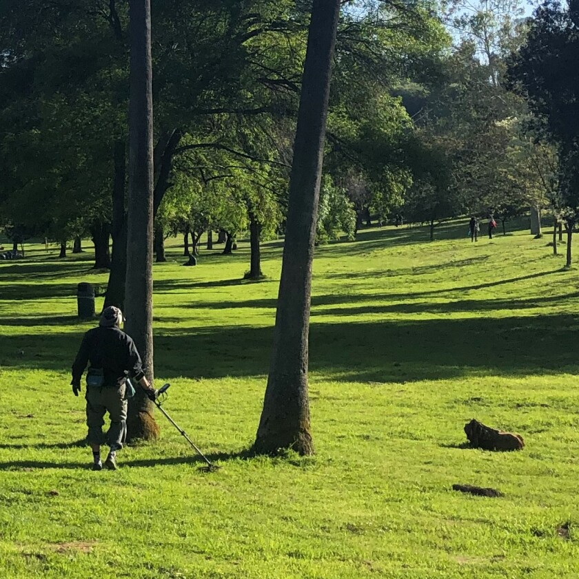 Zac Holtzman and his metal detector work the turf of Elysian Park, Los Angeles.