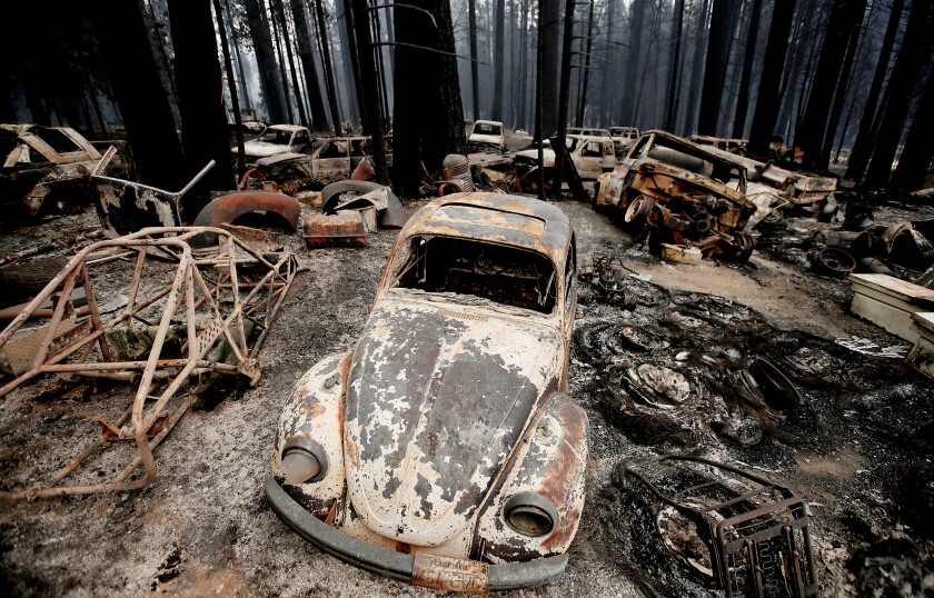 Burned vehicles in a forest
