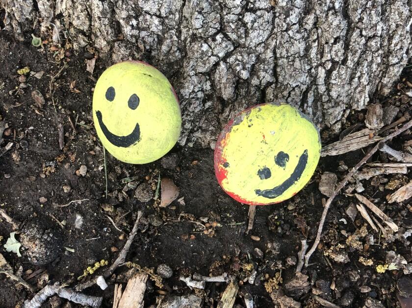 Two smiley-faced rocks in a Santa Clarita neighborhood are the work of Robert Clarke, the former president of Honda Racing Development.