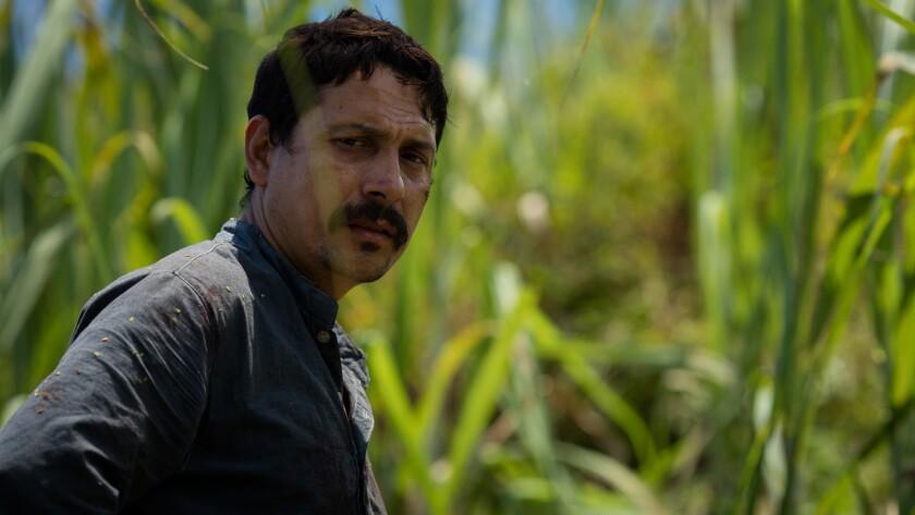 "Willington Gordillo in the movie ""Guilty Men"" by Iván Gaona."