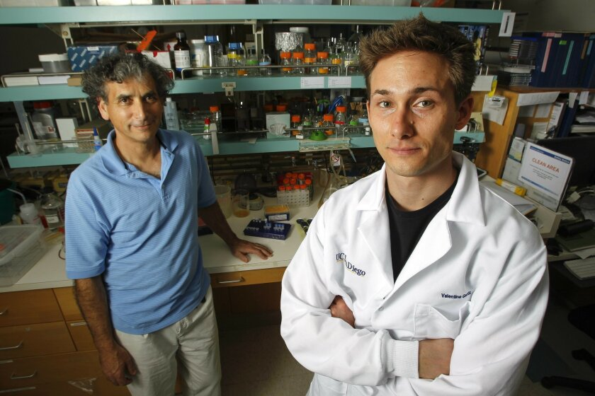 Highly efficient Cas9-mediated gene drive for population modification of the malaria vector mosquito Anopheles stephensi Score: 1,014 Picked up by news outlets: 97 Blogged by: 20 Tweeted by: 147 On Facebook pages: 8 Shown: Ethan Bier, left, and Valentino Gantz