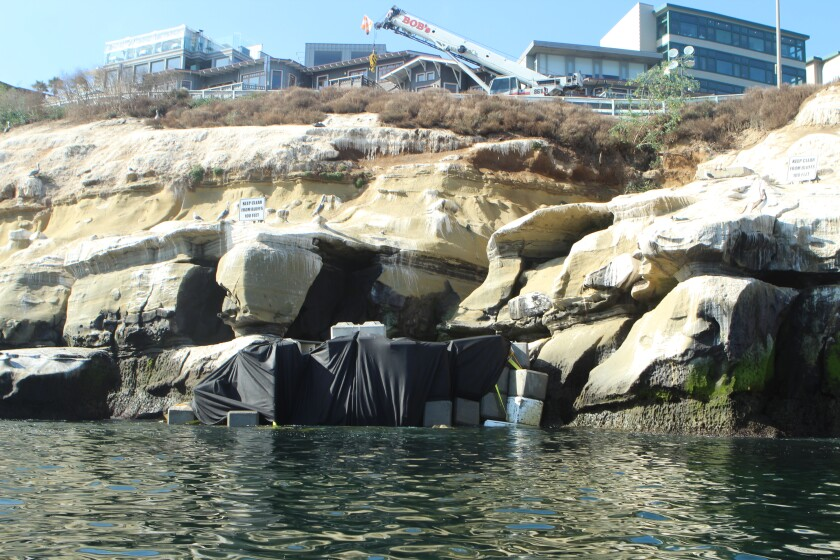 The entrance to Koch's Crack is barricaded off as City contractors fill the sea cave with a concrete slurry to prevent Coast Boulevard above it from caving in.
