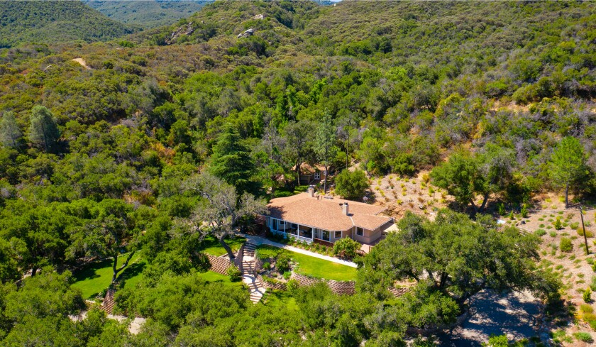 The 150-acre estate includes a main house, guesthouse, 800 olive trees and equestrian facilities such as a riding area.
