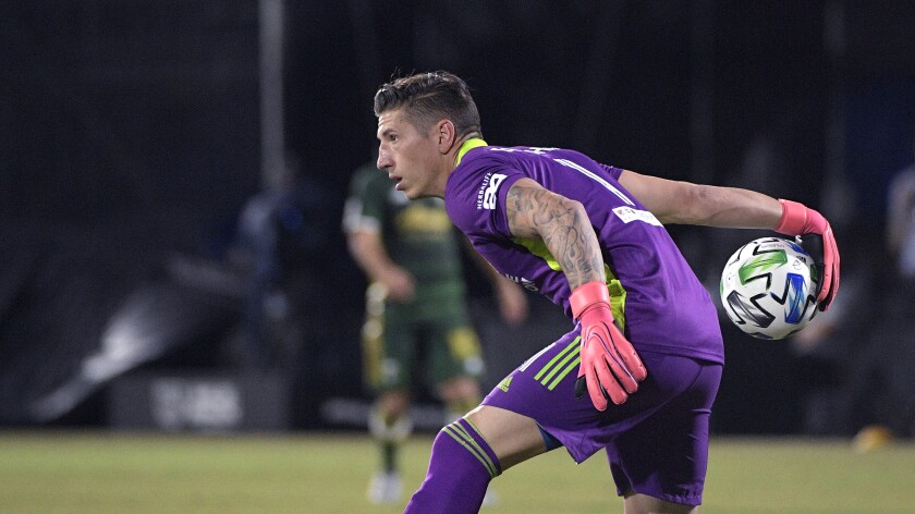 Galaxy goalkeeper David Bingham rolls the ball to a teammate during a game against Portland in July.