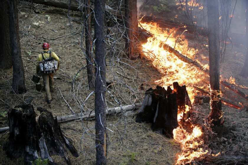 Firefighter Russell Mitchell, left, monitors a back burn during the Rim Fire near Yosemite National Park.