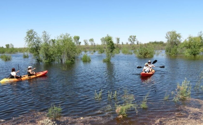 High water levels bring kayakers to Laguna Grande on Tuesday.
