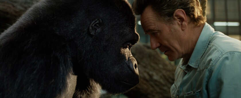 """Ivan (voiced by Sam Rockwell) and Bryan Cranston in the movie """"The One and Only Ivan."""""""