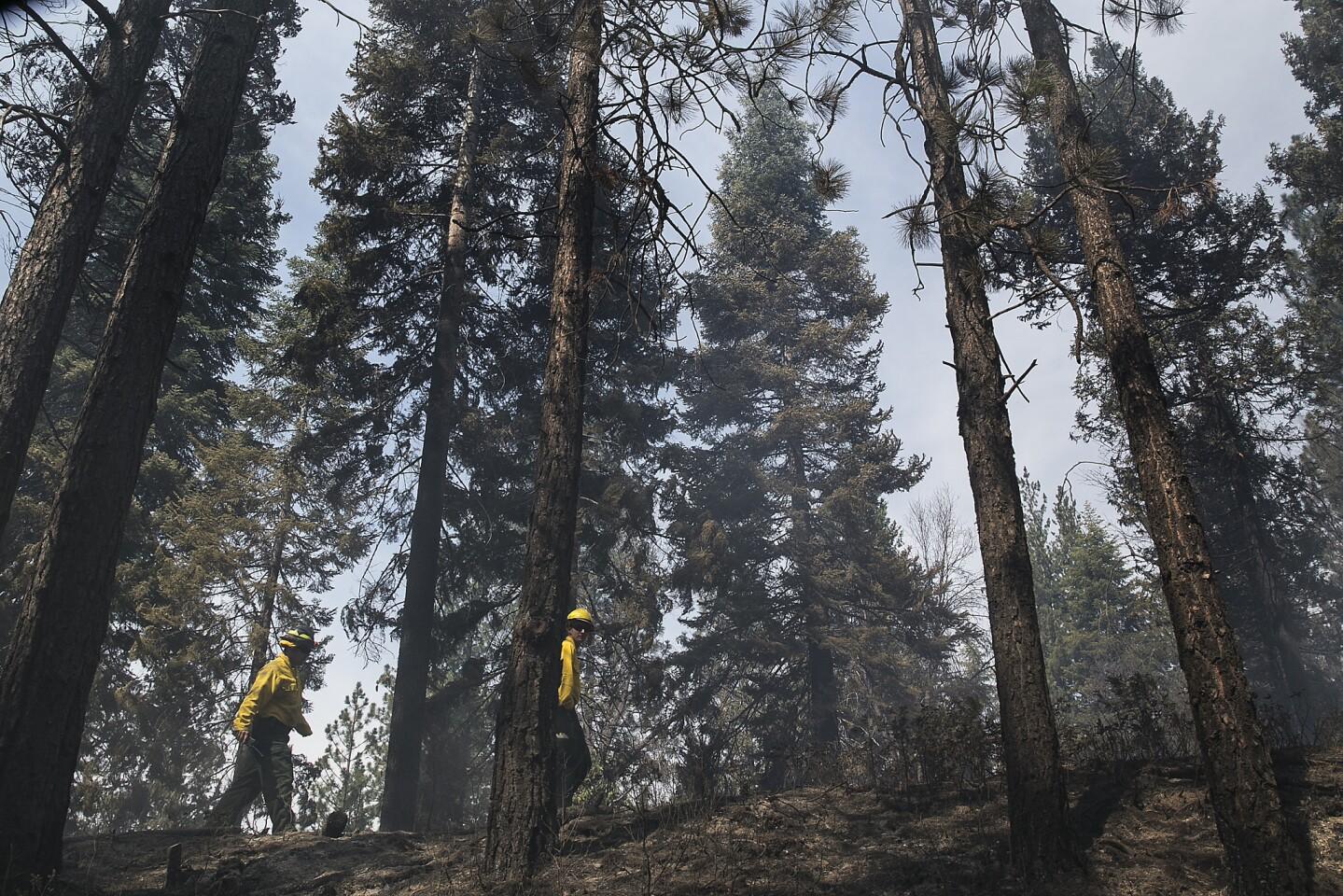 Dryer season expected in Yosemite