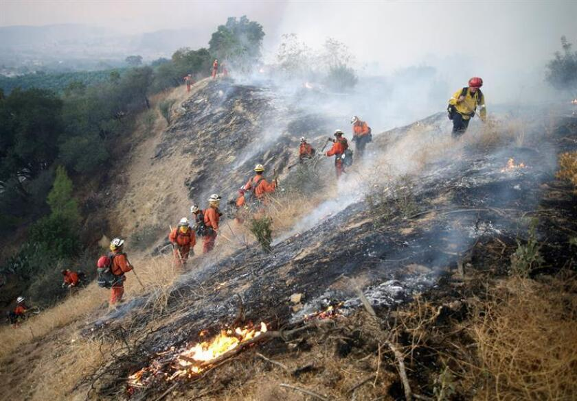 Reclusos bomberos combaten un incendio en California. EFE/Archivo