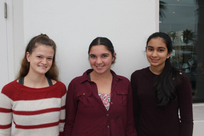 CCA Translational Science Club members Emily Kogan, Taraneh Barjesteh and Nithya Krishnamurthy.