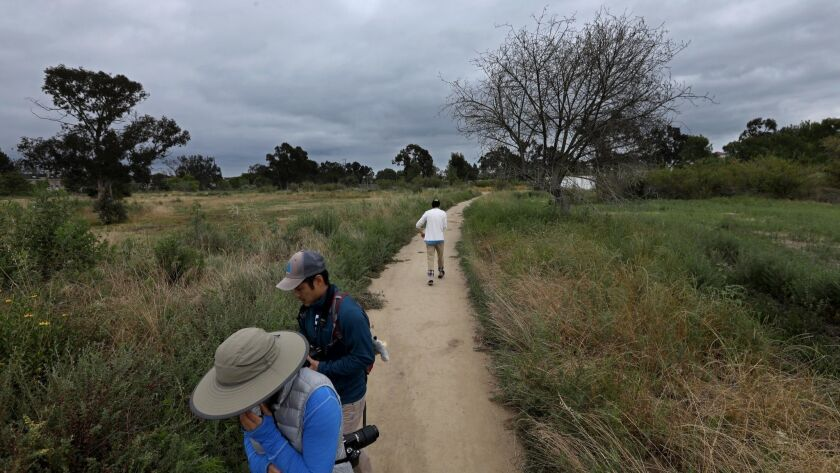 TORRANCE, CA - JUNE 2, 2019 - - Visitors walk down a main path at the Madrona Marsh Preserve in Torr