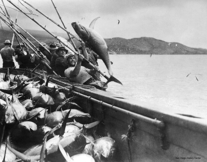 Tunamen used long poles to catch tuna prior to the introduction of nets on purse seiners in late-1950s.
