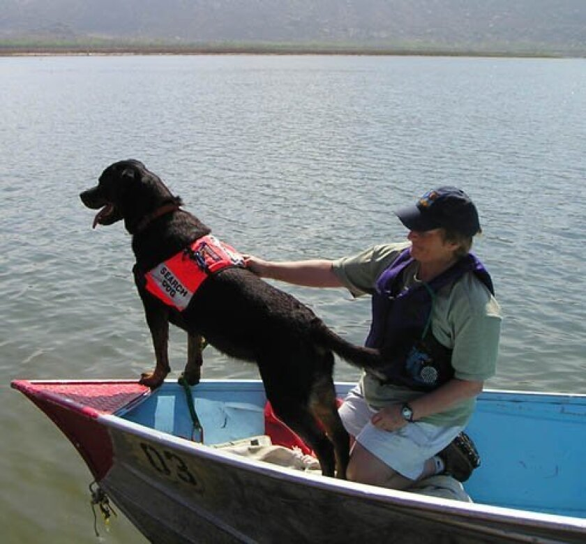 Julie Swain and Klaus on a water search.