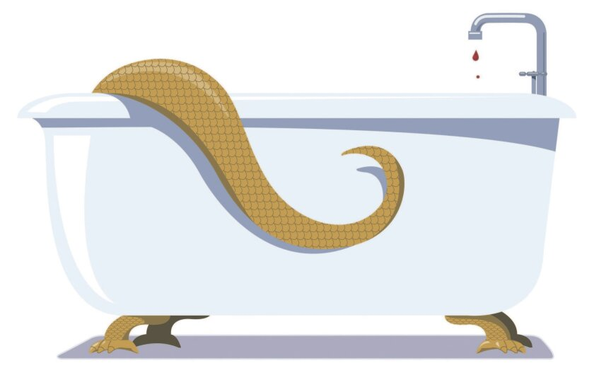 la-en-0214-envys-bathtub /// Illustration by Chris Morris / For The Times. To run with THE ENVYS in