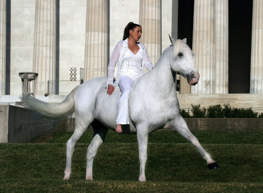 "Cynthia Royal rides Blanco, the horse who played Shadowfax in two of the ""Lord of the Rings"" movies, in this undated photograph taken at the Lincoln Memorial in Washington, D.C."