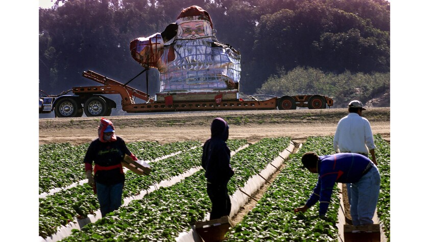 Jan. 29, 2003: Workers in a strawberry field in Oxnard stop to watch as the giant Santa swaddled in