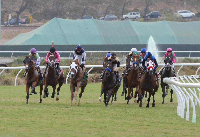 In the Grade III, $150,000 La Jolla Handicap, 25-1 long shot Free Rose (pictured, second from right) led from start to finish, and held off Lucky Bryan to prevail by a half-length.
