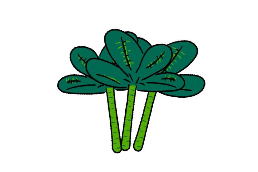 An illustration of tree collard greens