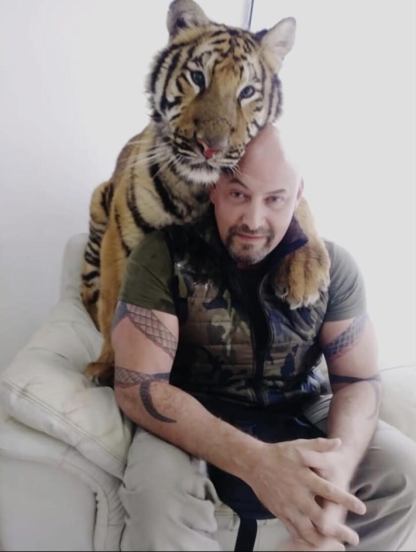 IVAN_Tiger.jpg