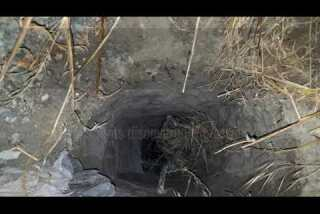30 apprehended after Border Patrol agents discover tunnel