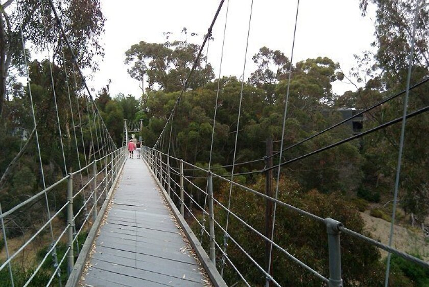 Spruce Street Suspension Bridge in Park West.