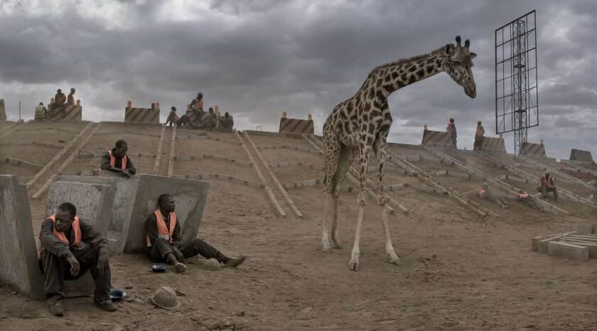 """""""Highway Bank Construction With Giraffe and Workers"""""""