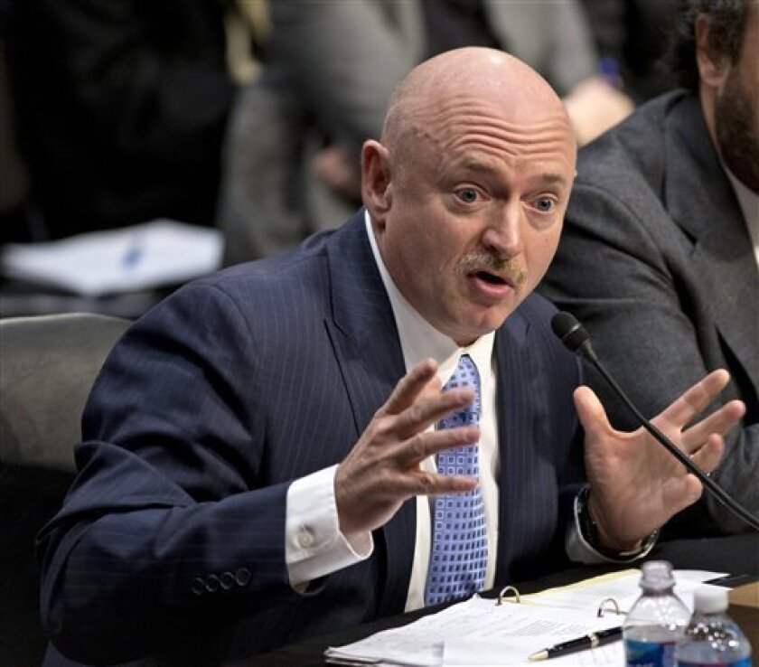 FILE -  In a Jan. 30, 2013 file photo Mark Kelly testifies at a Senate Judiciary Committee hearing in Washington, D.C.  The daughter of former astronaut Mark Kelly was walking her dog Shiner on Goff Island Beach when the dog bolted, ripping the leash from her hand and fatally attacking a beached ba
