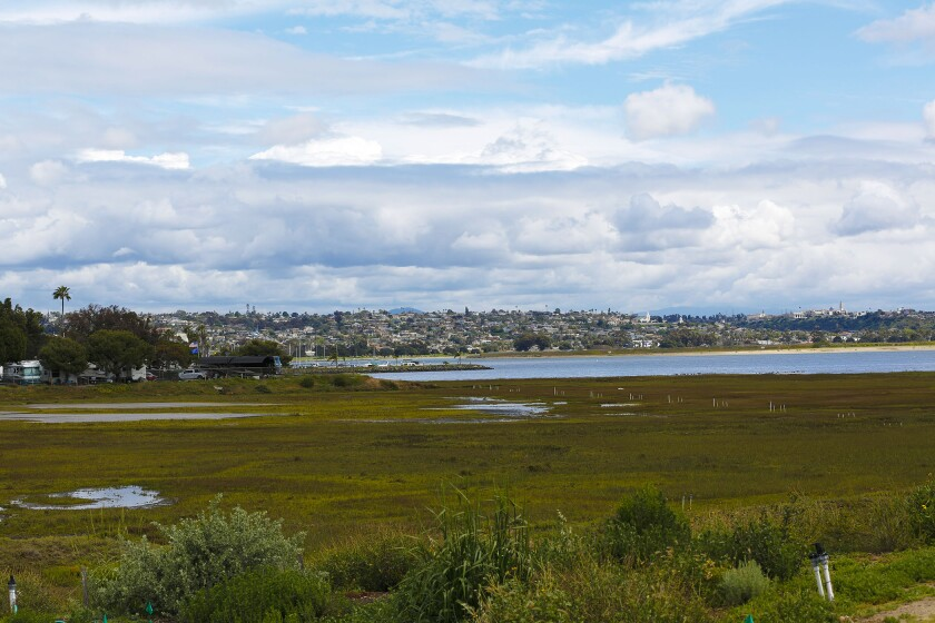 A view of Kendall-Frost Mission Bay Marsh Reserve on the corner of Pacific Beach Drive and Crown Point Drive. The Mission Bay Park Master Plan calls for 120 acres of marshland. The City's preferred plan would add 84 acres of Campland on the Bay (in the back left, above) to the existing 40 acres of the Marsh Reserve.