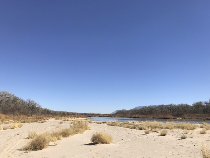 This March 28, 2021 image shows tumbleweeds covering a sandbar along the Rio Grande in Albuquerque, N.M. Like elsewhere in the southwestern U.S., water managers in New Mexico are warning farmers that demand is expected to outpace supply this year due to limited winter snowpack and spring runoff. (AP Photo/Susan Montoya Bryan)