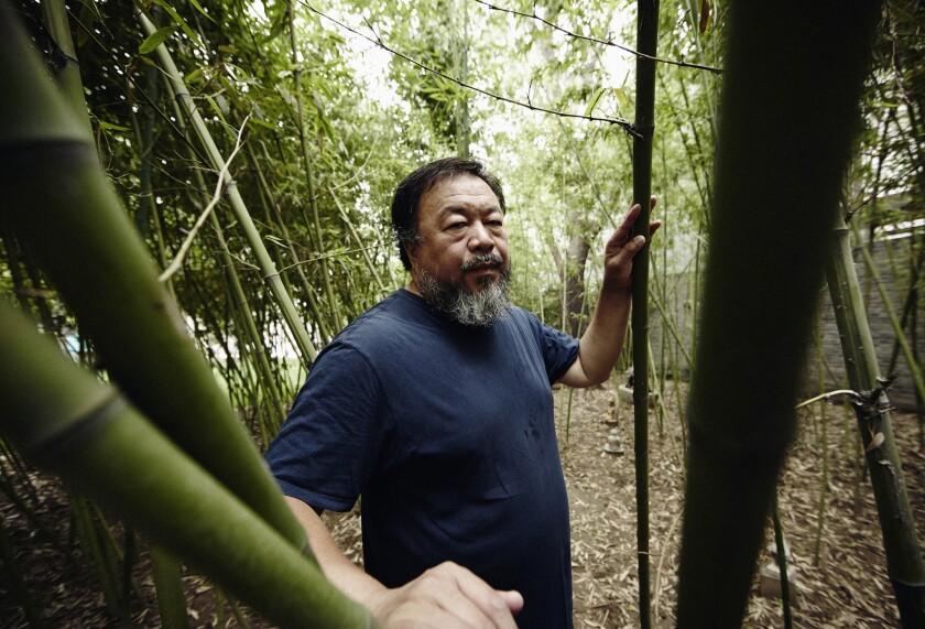 Ai Weiwei exhibition on Alcatraz