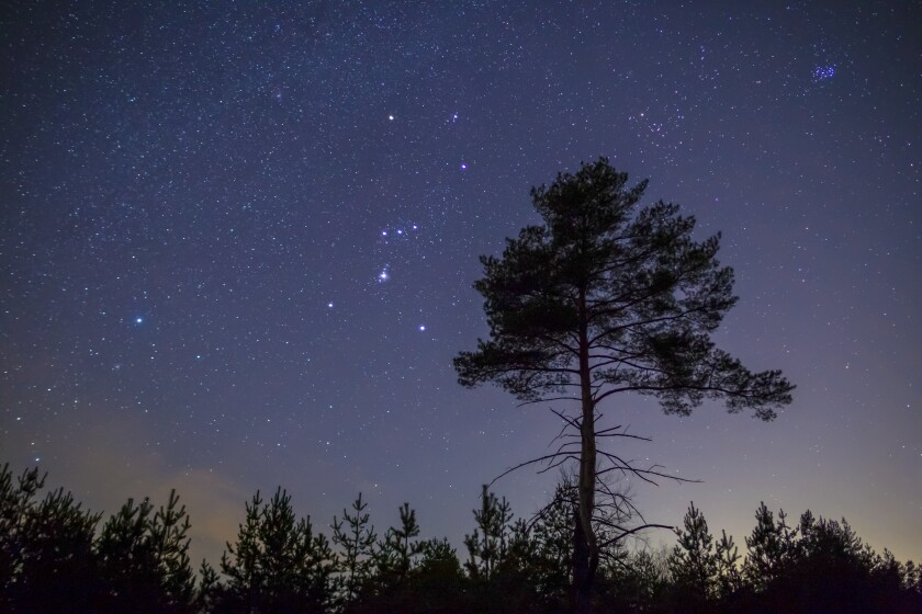The constellation Orion.