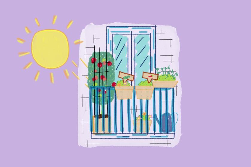 Illustration of pots on balcony