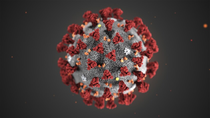 This illustration provided by the Centers for Disease Control and Prevention in January 2020 shows the 2019 Novel Coronavirus (2019-nCoV). This virus was identified as the cause of an outbreak of respiratory illness first detected in Wuhan, China. (CDC via AP)