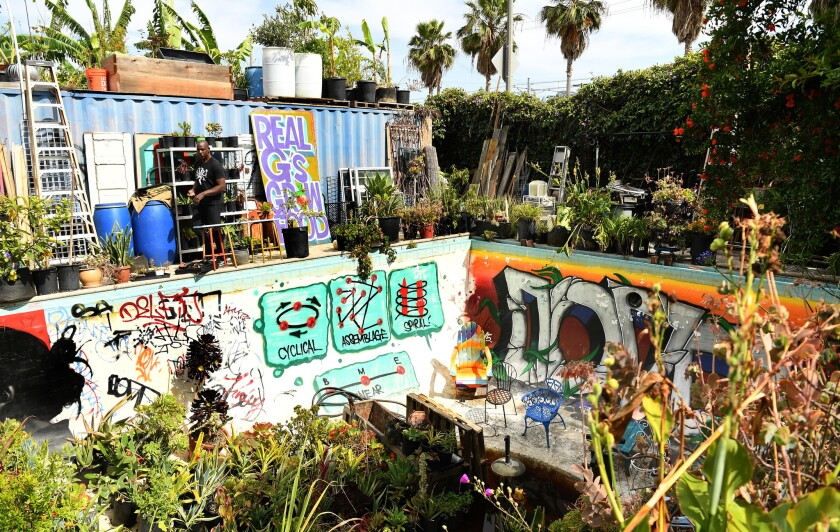The backyard includes an Olympic-sized swimming pool full of plants and murals by one of Finley's so