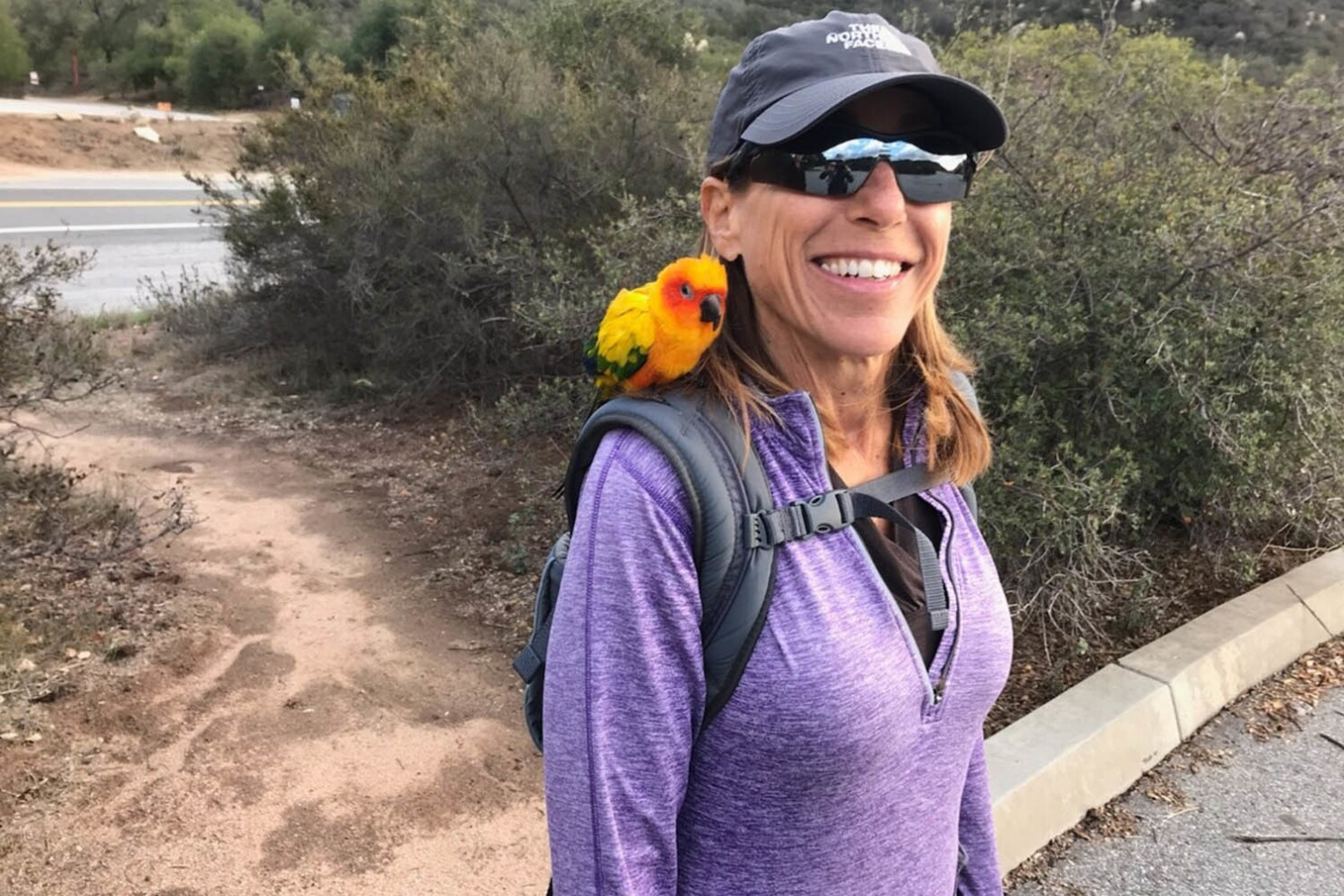 Missing Huntington Beach woman found alive in Inyo County