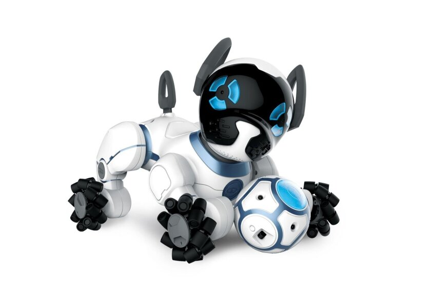 This photo provided by WowWee shows CHiP, one of several products at Toy Fair controlled by a wristband worn by the user. The connection allows the little robot dog to follow his owner around, play soccer and do other tricks.  (WowWee via AP)