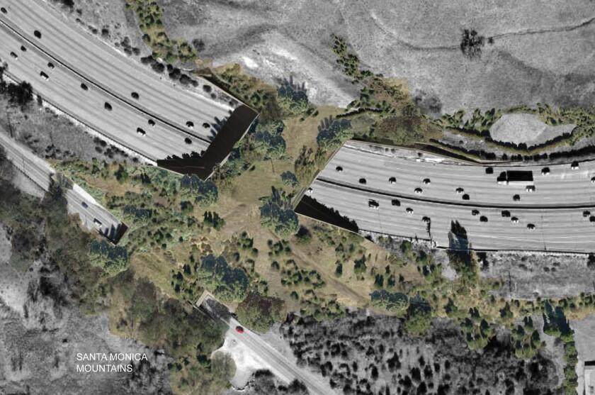 Rendering of wildlife overpass