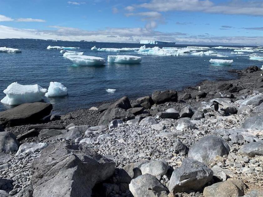 Scientific expedition arrives at Antarctic nesting island for penguins