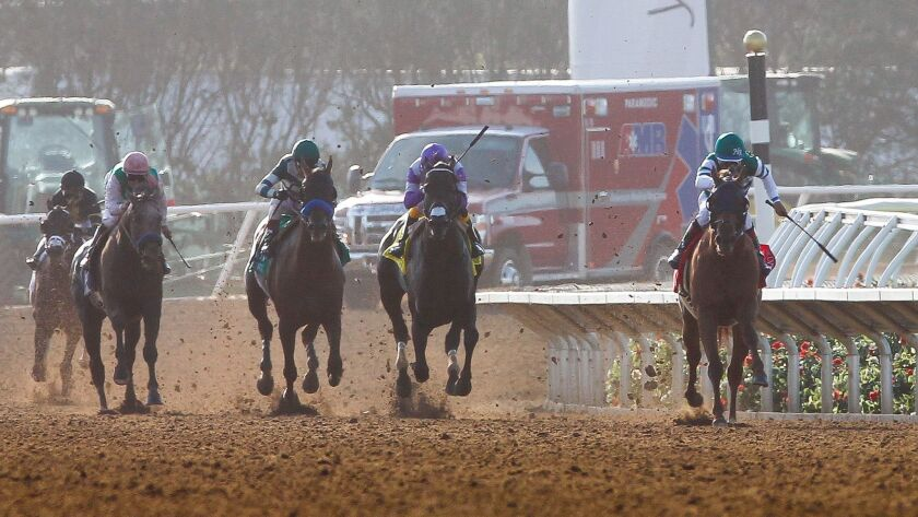 Thoroughbreds pound down the final stretch at the Del Mar Racetrack in July. The track will be home to the 2017 Breeders' Cup Series Nov. 3 and 4.