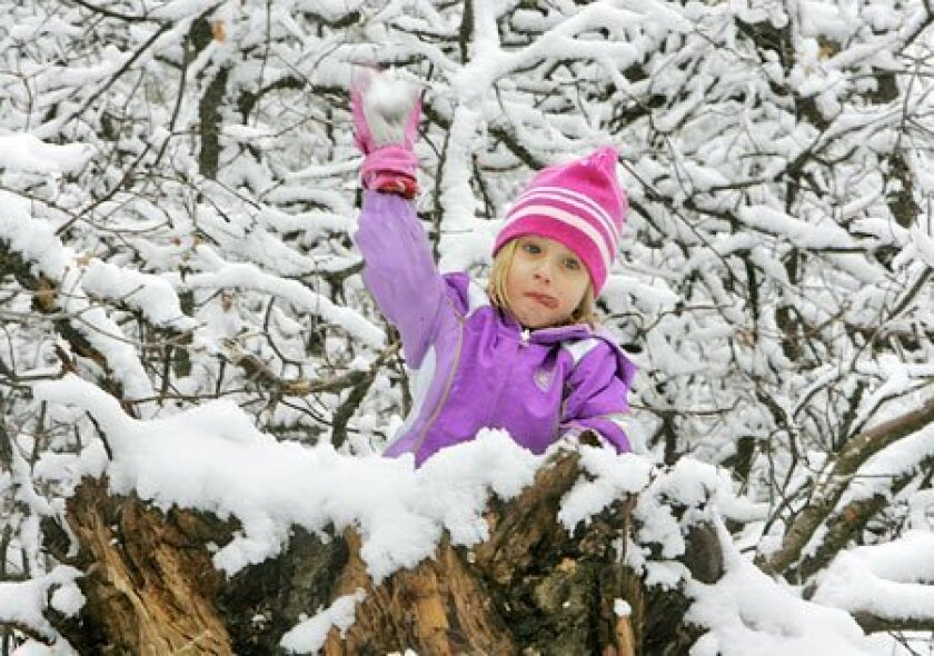 Hannah Wood, 4, had a strategic vantage point for lobbing snowballs at her brother yesterday near the Laguna Mountain Visitor Information Center. (Charlie Neuman / Union-Tribune)