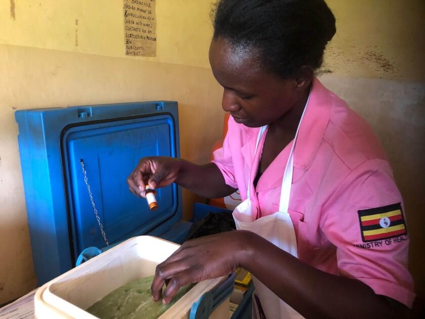 Health worker Sharita Ndagire packs vials of measles vaccine