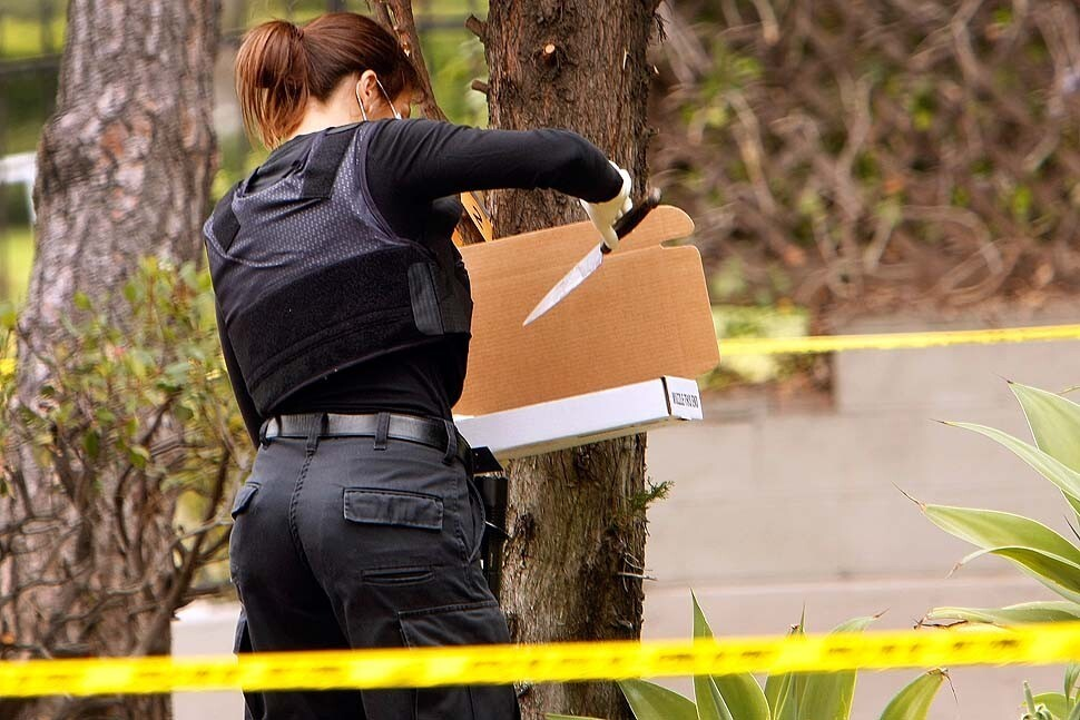 An LAPD investigator collects a knife stuck in a tree as they look for evidence at an apartment building located at the corner of Washington Boulevard and Buckingham Road in Lafayette Square.