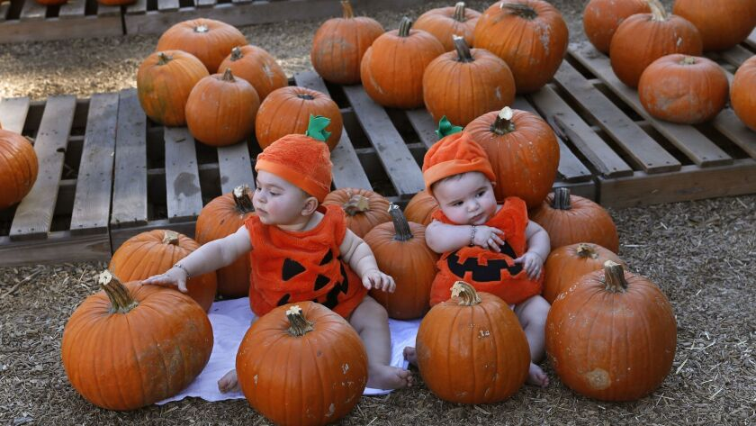 George Adjikian, left, and his cousin Abraham Daglian visit a pumpkin patch in Encino.