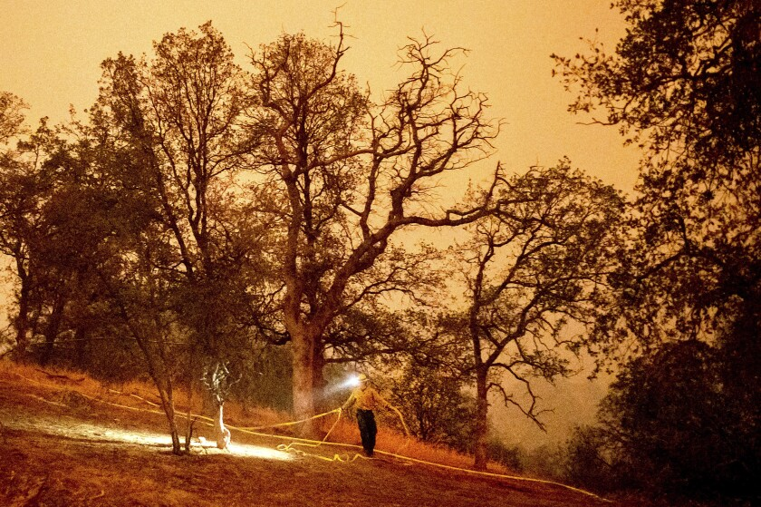 A firefighter lays hose in a wooded area