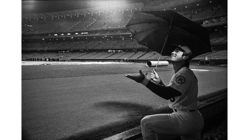 April 12, 1976: Los Angeles Dodger first baseman Steve Garvey uses umbrella as he watches rain fall